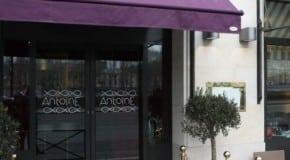 Thibault Sombardier : nouveau Chef du restaurant Antoine