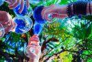 Gïk, le vin espagnol bleu qui fait le pari de l'innovation