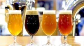 La bière artisanale fait pétiller l'économie des régions