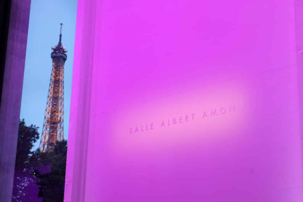 Maurice Alain Amon musée d'art moderne de la ville de Paris